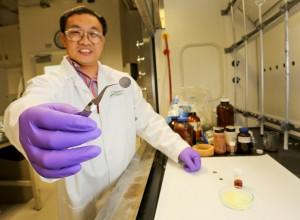 Oak Ridge National Laboratory create solid state Lithium Sulphur Battery
