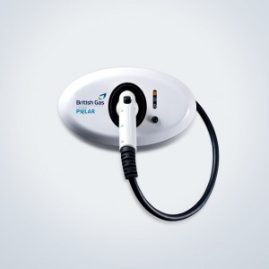 British Gas Polar Home Charge Point